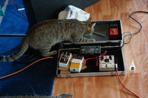 Kyna attacks the pedals